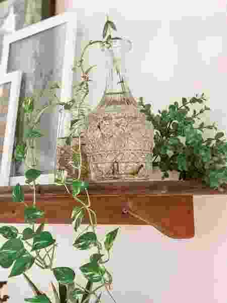 Ellen Cortizo decora a casa toda com plantas - Arquivo pessoal - Arquivo pessoal