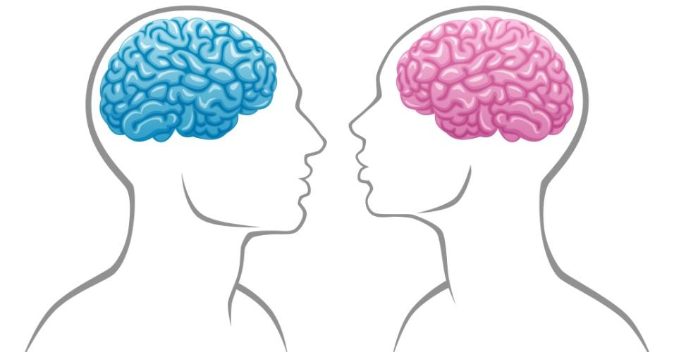 Cientistas dizem que não há diferenças entre cérebro masculino e feminino