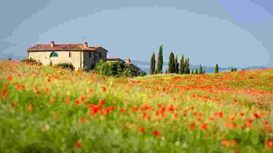 Paisagem florida na Toscana, Itália - kre_geg/Getty Images/iStockphoto