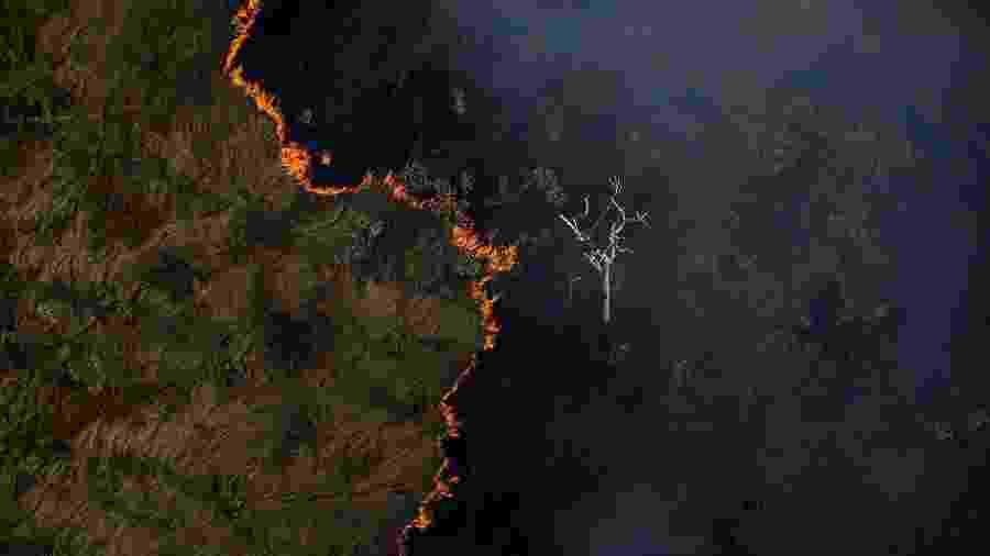 Queimada é vista do alto, em meio a área de floresta próximo a capital Porto Velho - Bruno Kelly/Amazônia Real