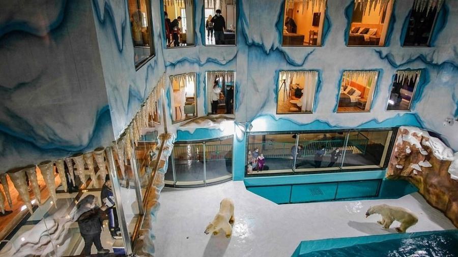 Harbin Polar Land, no nordeste da China: janelas dos quartos do hotel voltadas para o cercado dos ursos  - Reuters