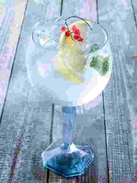Gin/ Gin tônica - iStock - iStock