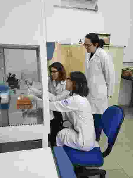 As irmãs Samara e Sophia Rossi desenvolveram estudo sobre antibacterianos - Divulgação
