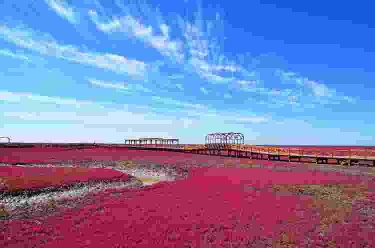 praia vermelha china - Getty Images/iStockphoto - Getty Images/iStockphoto