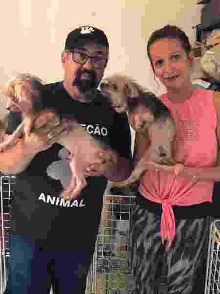 Luisa Mell resgata 113 animais em canil clandestino na Zona Leste (SP) - Reprodução/Instagram/luisamell - Reprodução/Instagram/luisamell