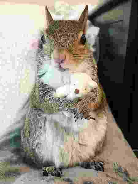 Jill abraça seu ursinho de pelúcia - Divulgação/Instagram