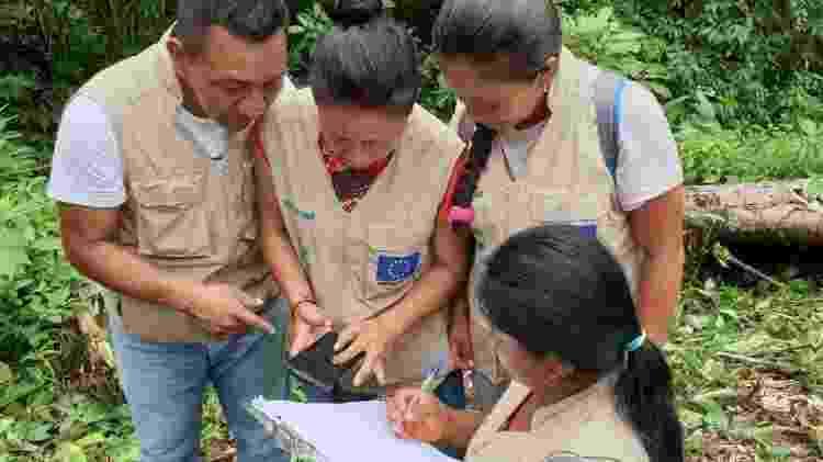 Monitores - Amazônia 2.0/IUCN.   - Amazônia 2.0/IUCN.