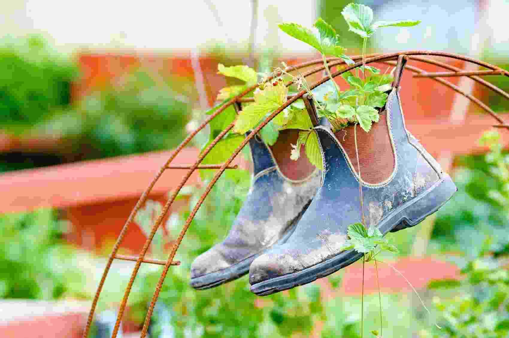 Hortas e jardins diferentes - Getty Images