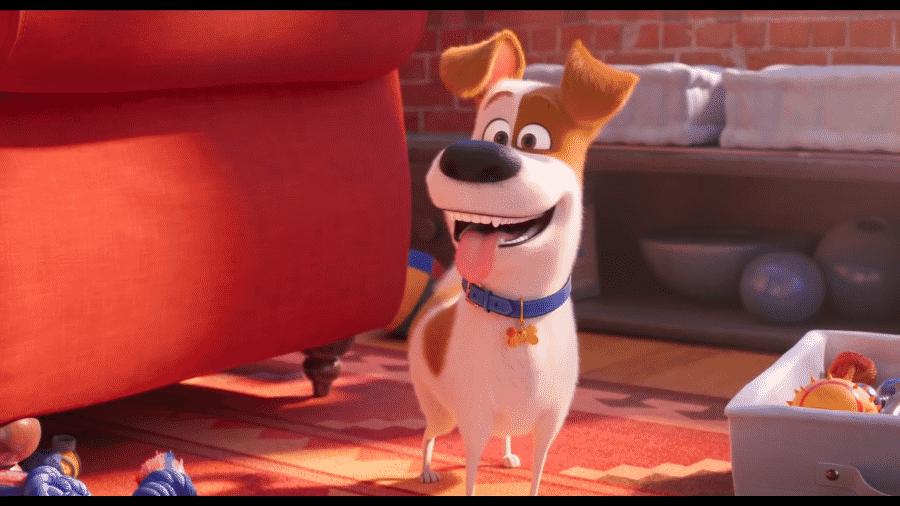 """Cena do teaser de """"Pets - A Vida Secreta dos Bichos 2"""" - Reprodução/Youtube"""