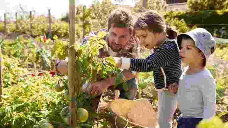 plantados jardinagem com crianças - Getty Images/iStockphoto - Getty Images/iStockphoto