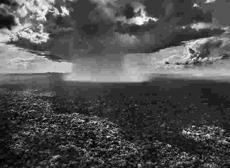 Tempestade no Parque Nacional da Serra do Divisor, no Acre - Sebastião Salgado - Sebastião Salgado