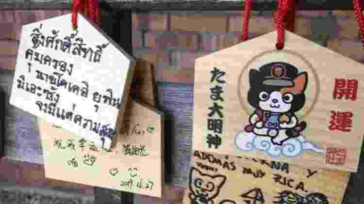 Fãs de Tama a homenagearam com flores e latas de atum na Estação Kishi - Rob Goss