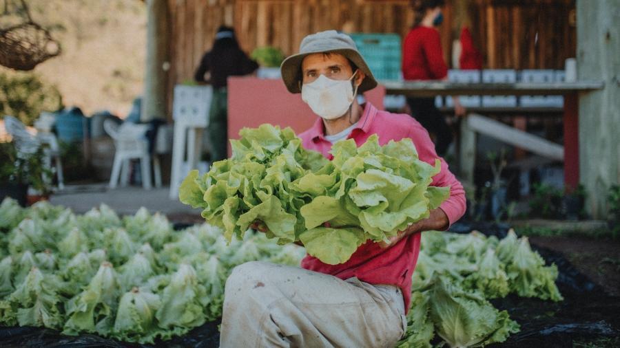 Agricultor envolvido no projeto Orgânico Solidário - Divulgação