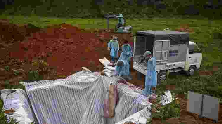 H1N1, BBC 5 - MANAN VATSYAYANA/GETTY IMAGES - MANAN VATSYAYANA/GETTY IMAGES
