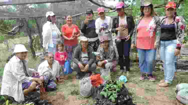 Rede Mulheres do Pajeú - Arquivo - Arquivo