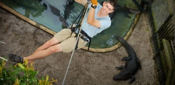 No passeio, turistas ficam pendurados a poucos metros dos enormes répteis - Divulgação/Alligator Farm