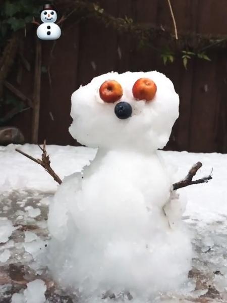Que tal o boneco de neve de Evaristo? - Reprodução/Instagram