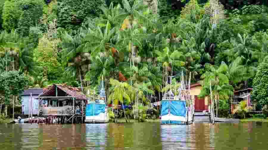 Região amazônica na Guiana Francesa: ao longo da história, ocupação no território se deu na costa - Getty Images/BBC
