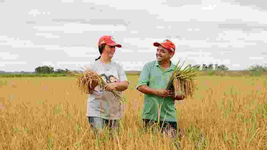 Nos últimos dias, o movimento viu as venda semanais de arroz orgânico saltarem de 198 kg para 260 kg - Alex Garcia