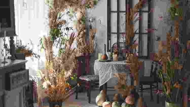 Capim dos pampas acompanha tendência de plantas secas dentro de casa - Yulia Shaihudinova/Getty Images - Yulia Shaihudinova/Getty Images