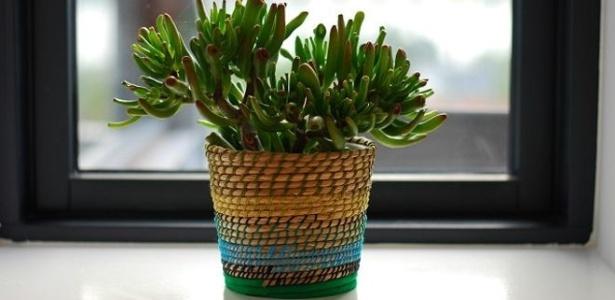 As plantas se encarregam de filtrar poluentes do ar tais como benzeno e amoníaco - Thinkstock