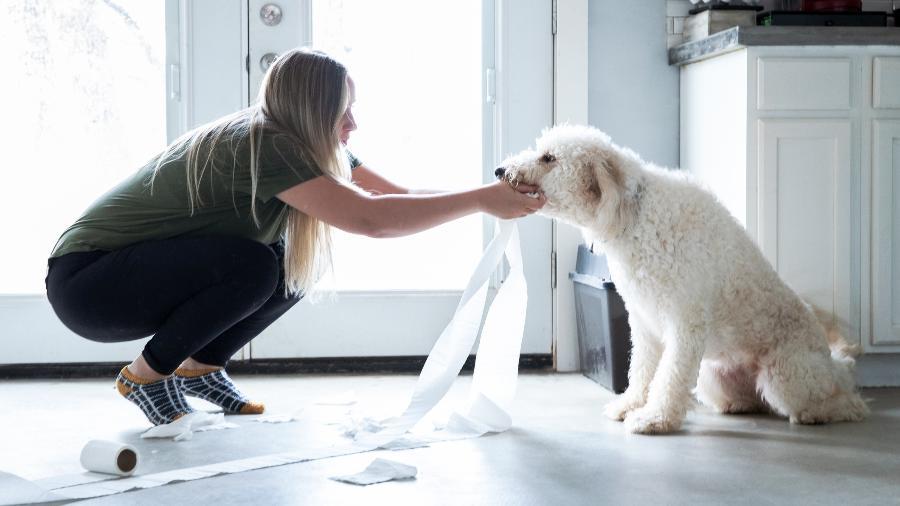 Seu cachorro comeu alguma coisa que não devia? Procure um veterinário - Getty Images/iStockphoto