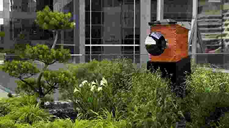 Bee Wall, da unidade de Toronto da rede Shangri-La  - Divulgação - Divulgação