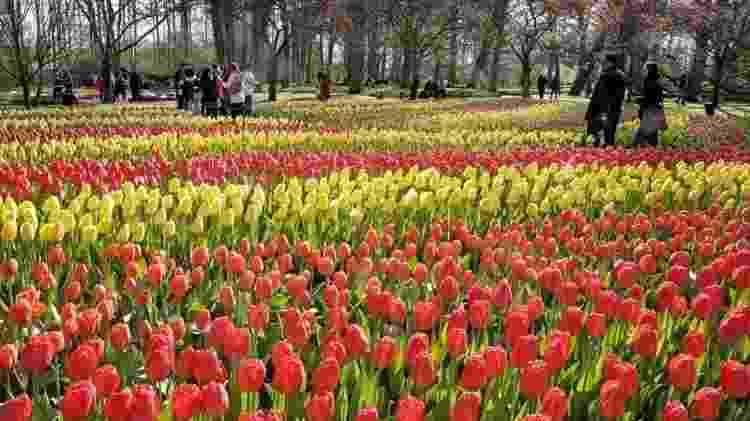 O parque Keukenhof recebeu quase 1,2 milhão de visitantes no ano passado - Divulgação/Parque Keukenhof - Divulgação/Parque Keukenhof