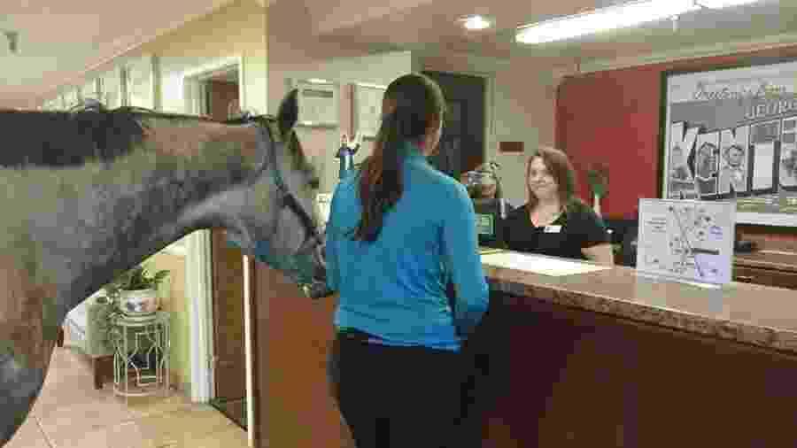 A cavaleira canadense Lindsey Patridge e seu cavalo de corrida Blizz  - Reprodução/Facebook