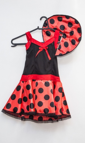 A fantasia de joaninha custa R$ 72 na loja Porto das Festas e Fantasias (Ladeira Porto Geral, 88 - Centro - São Paulo)