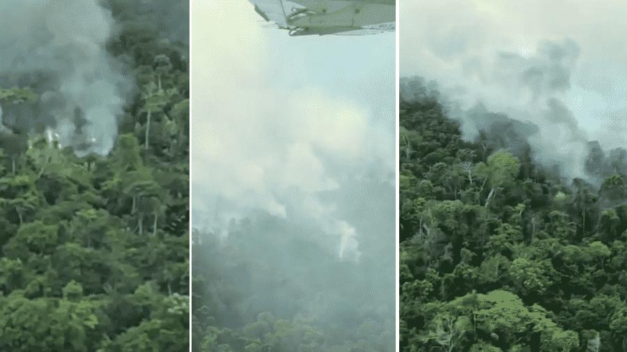 Bruno Gagliasso mostra destruição da Amazônia - Reprodução/Instagram