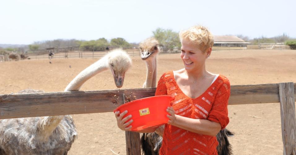 Set.2015 - Xuxa alimenta animais durante gravação de reportagem em Curaçao para seu programa