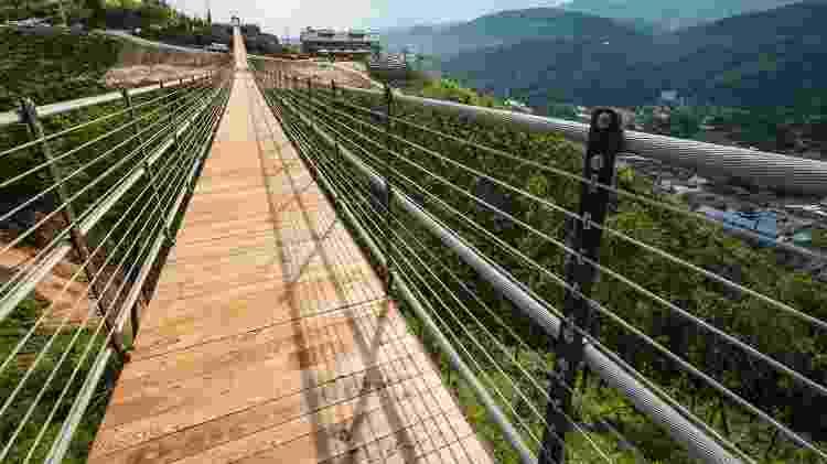 Da SkyBridge, é possível admirar as paisagens das Great Smoky Mountains - Marcus Watson/Skylift Park