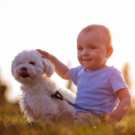Exposição a animais domésticos durante a infância faz bem - Getty Images