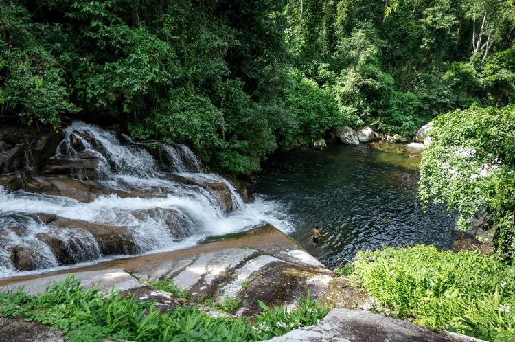 Mongabay: Rio em Parati (RJ), em área de Mata Atlântica - Deni Williams - Deni Williams