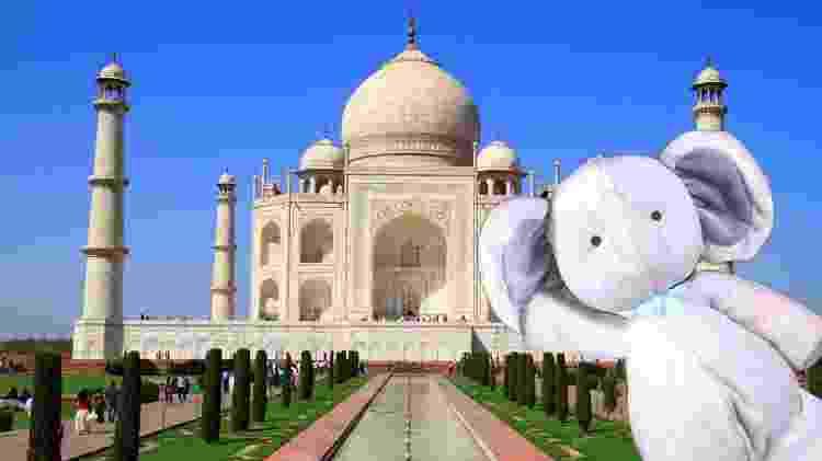 Elefantinho também tirou selfie no Taj Mahal - Reprodução/Reddit - Reprodução/Reddit
