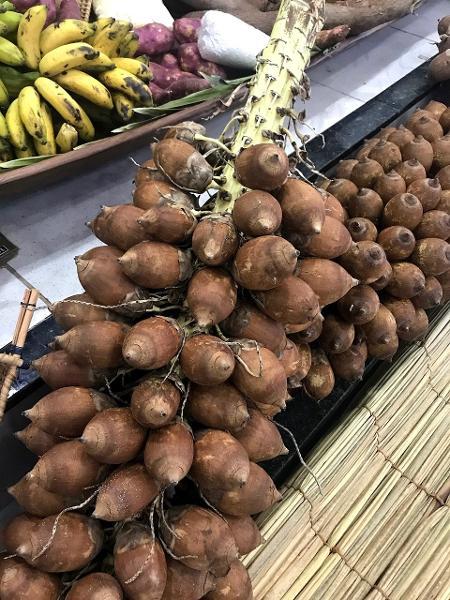 O coco babaçu é um dos alimentos pouco conhecidos da biodiversidade brasileira - Bela Gil