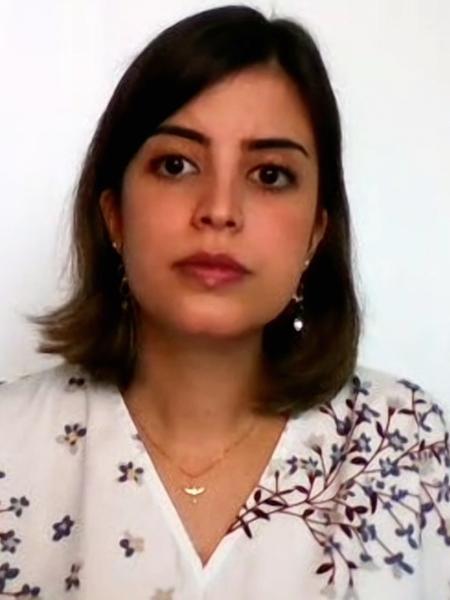 O ator Zé de Abreu retuitou ameaças contra a deputada Tabata Amaral. - Reprodução