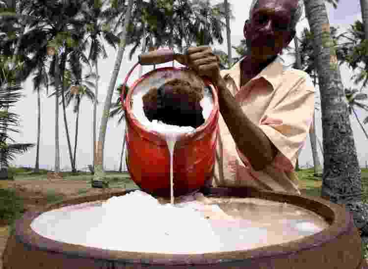Processo de fermentação do vinho de palma no Sri Lanka, país onde ele também é chamado de toddy - Getty Images - Getty Images