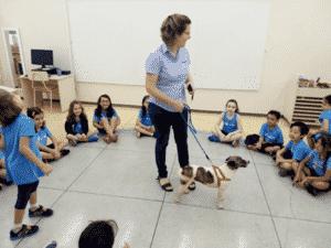 Pets na escola - Os cães precisam ser dóceis e usar coleira para terem contato com as crianças - Divulgação - Divulgação