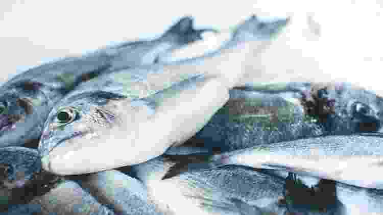 Escolher um bom peixe é fundamental para suas receitas - Jakub Kapusnak/Unsplash