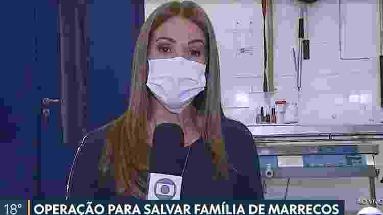Ananda Apple - Reprodução/TV Globo - Reprodução/TV Globo