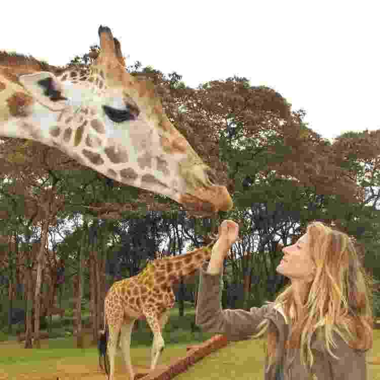 Gisele girafa - Reprodução/Instagram - Reprodução/Instagram