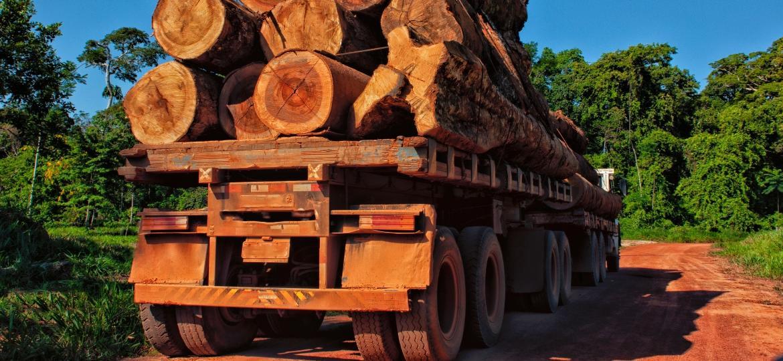 Um caminhão carregado de troncos na Floresta Amazônica - Brasil2/Getty Images/iStockphoto