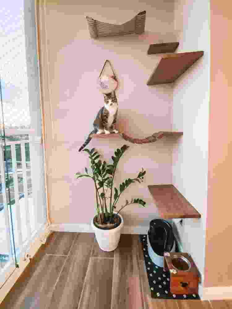 O gatil que ensinamos no vídeo: com prateleiras, ponte e até rede para descansar - Apto.21 - Apto.21
