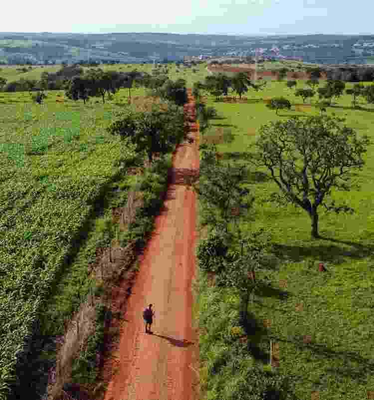 Caminho de Cora Coralina - Richard Oliveira - Richard Oliveira
