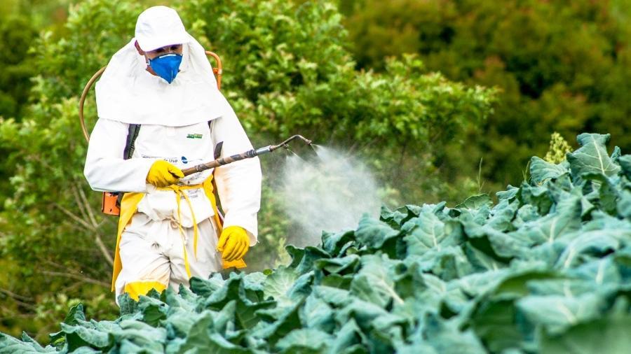 Presidente Jair Bolsonaro editou decreto que altera regras sobre produção, pesquisa, utilização, importação e exportação de agrotóxicos no Brasil - alffoto/iStock