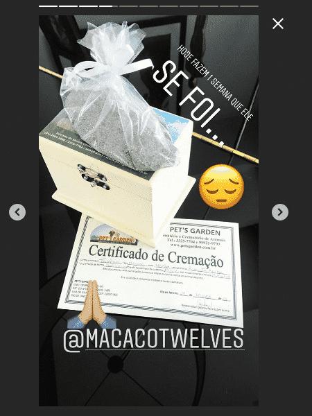 Latino mostra cinzas e certificado de cremação de Twelves - Reprodução/Instagram