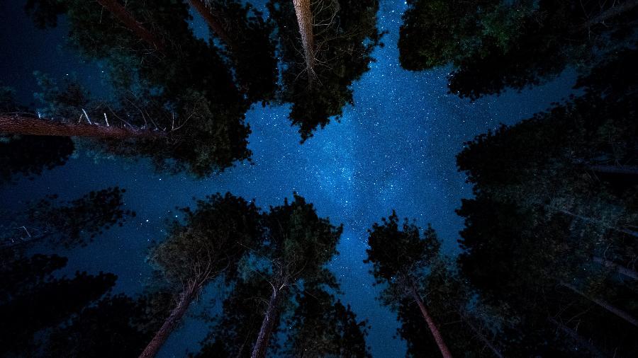 Junho de 2021: leia as previsões astrológicas do mês - Michael L.