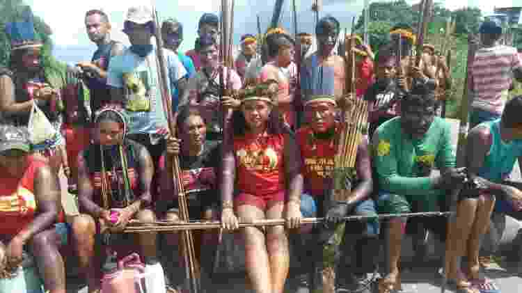 guerreiras e guardiões da floresta - Divulgação - Divulgação